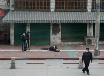 lhasa15marca2008ranny